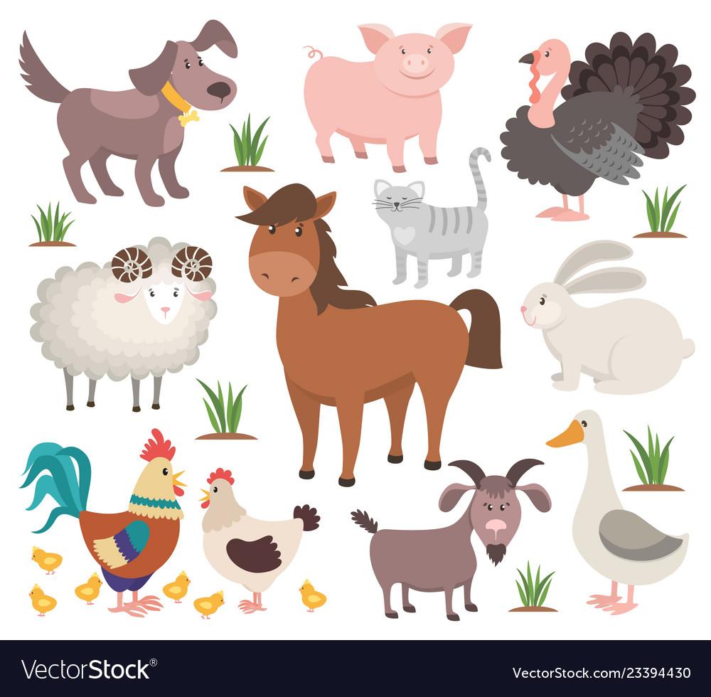 Cartoon farm animals turkey cat ram goat chicken