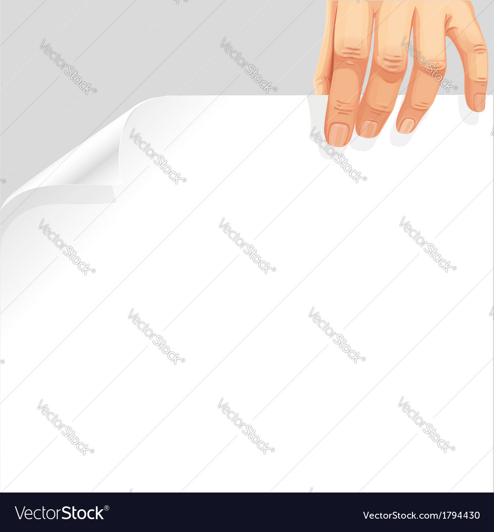 Male hand holding a blank white page curl