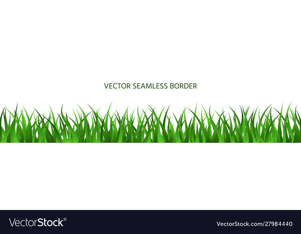 Green grass seamless border backdrop summer banner