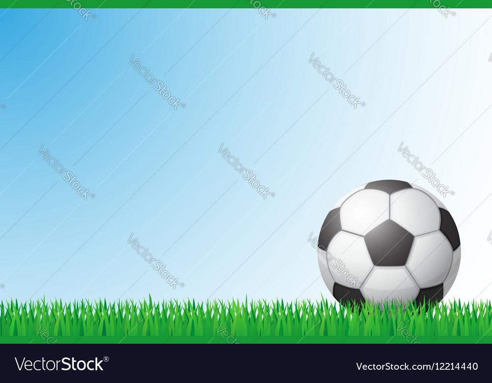 Sports grass field 01