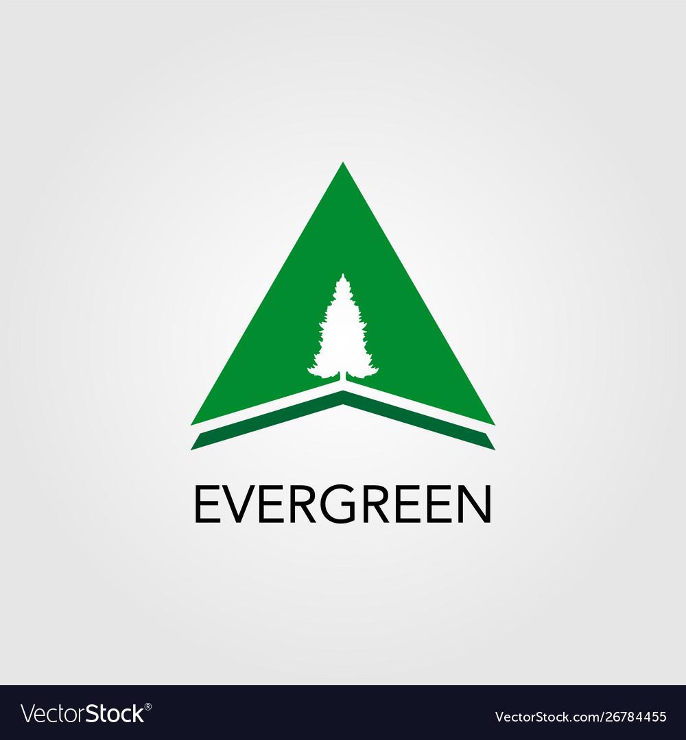 Triangle with pine tree logo