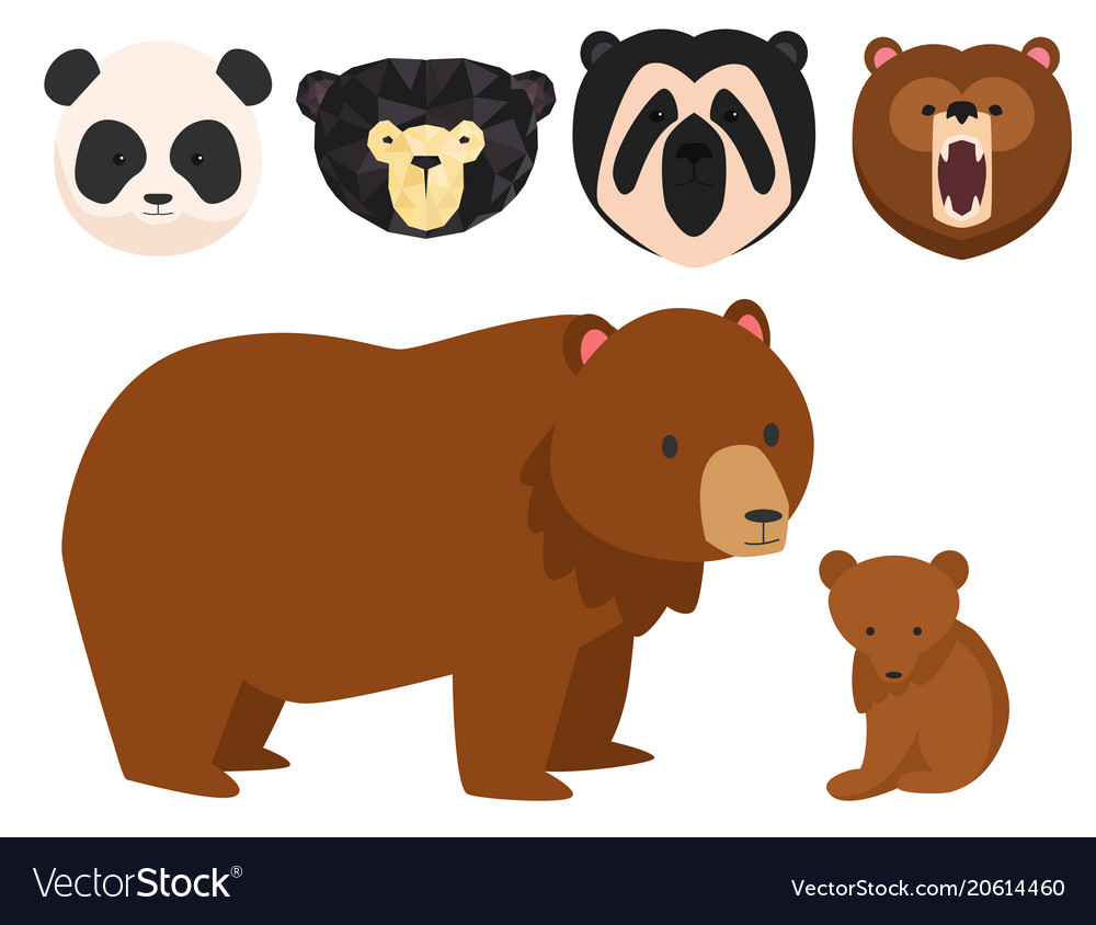 Bears different style funny happy animals
