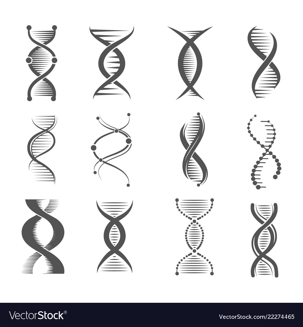 Dna spiral icons helix human technology research