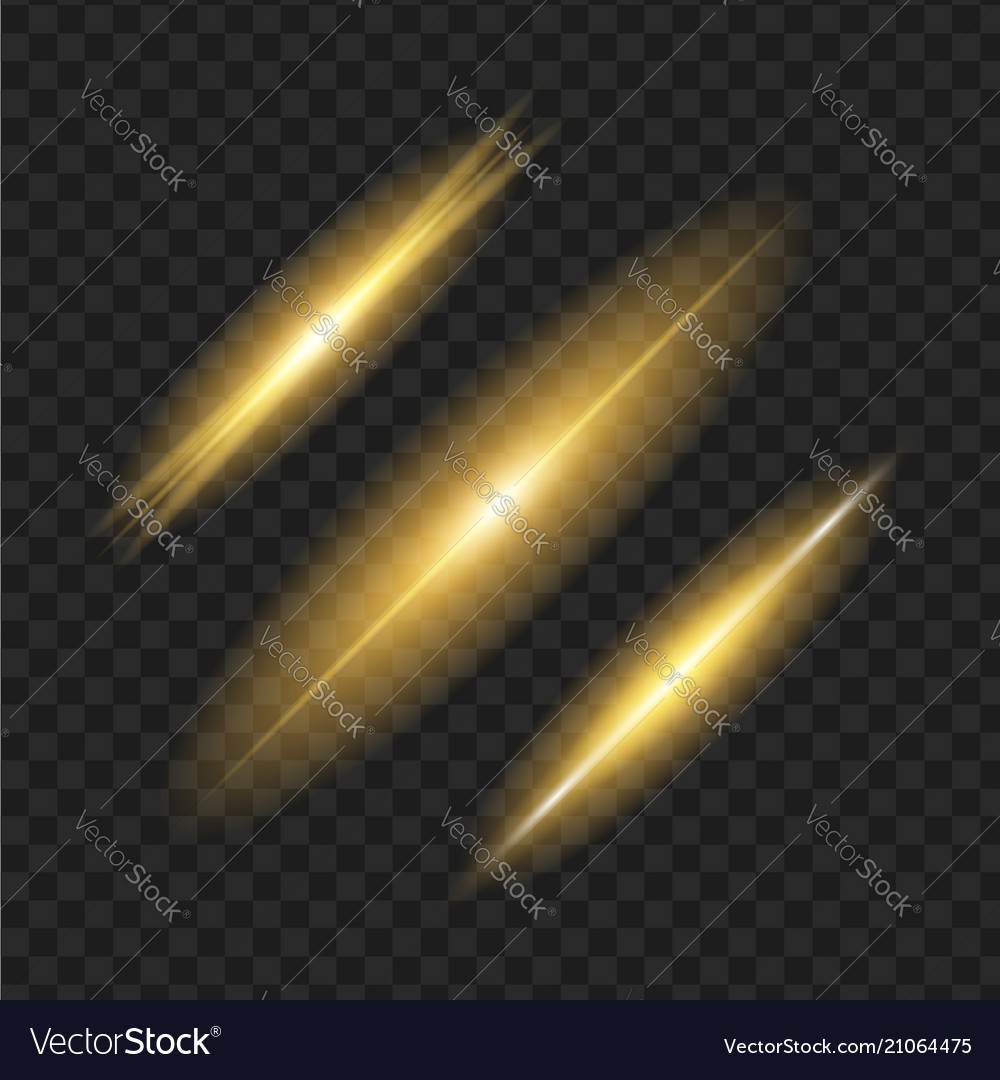 Glowing lights on black transparent background