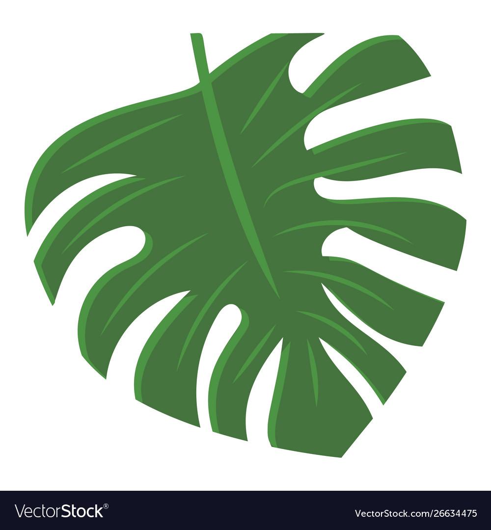Monstera leaf icon cartoon style
