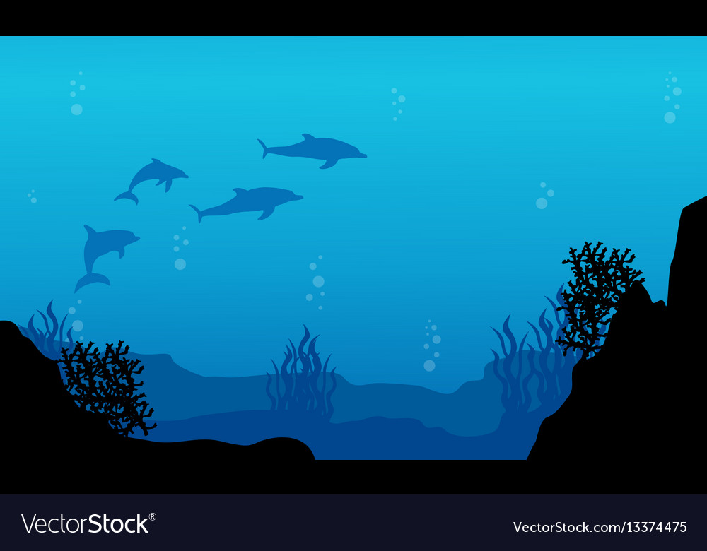 silhouette of dolphin and reef underwater vector image
