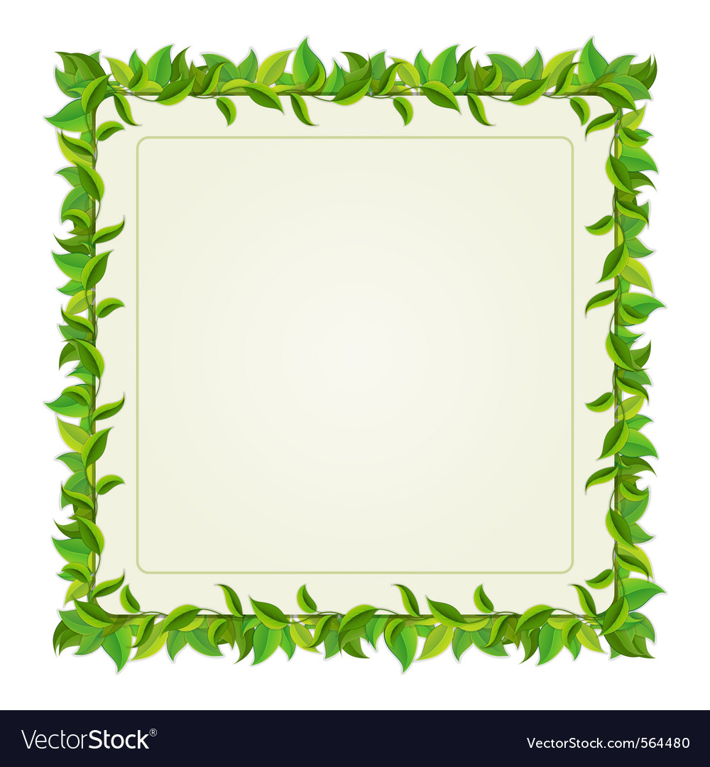 Frame from green leaves Royalty Free Vector Image