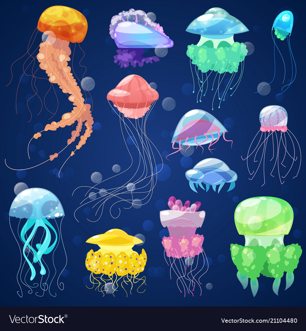 Jellyfish ocean jelly-fish and underwater