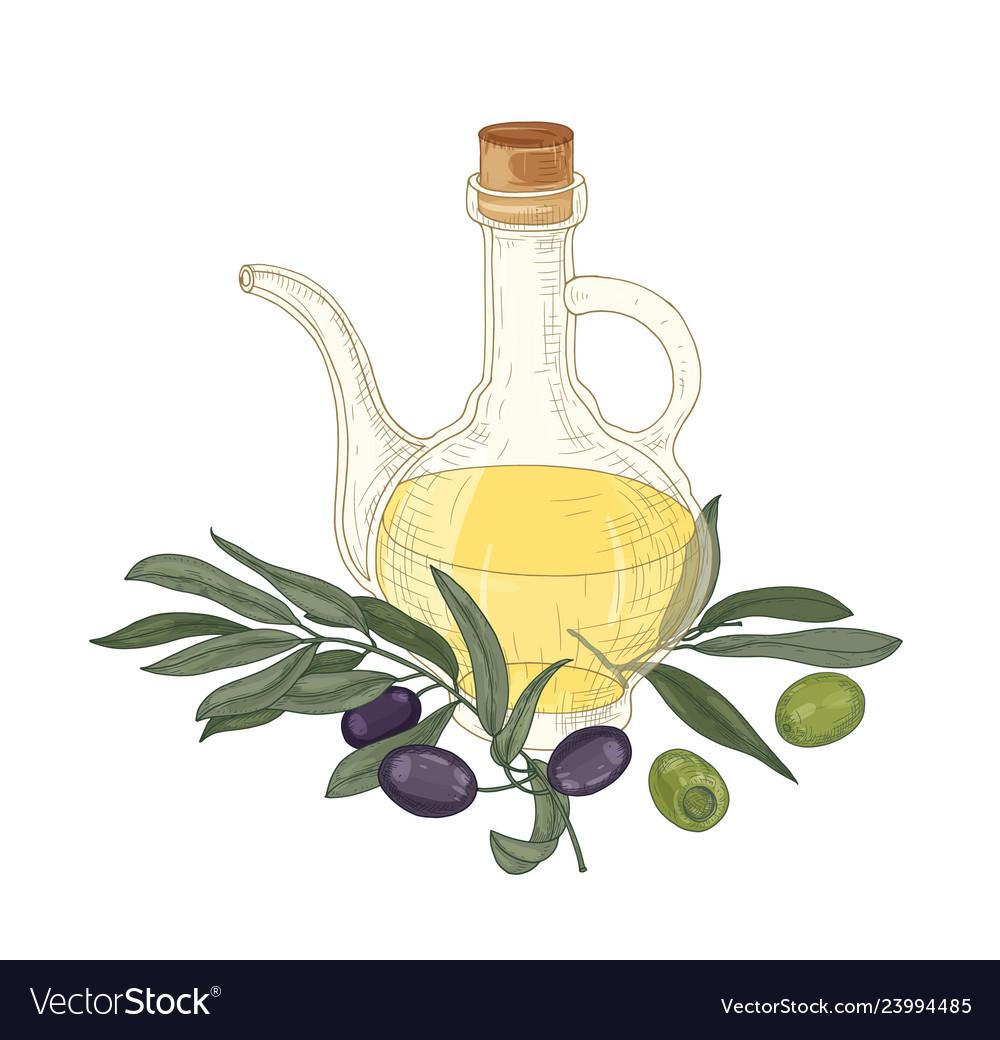 Elegant drawing of extra virgin oil in glass jug