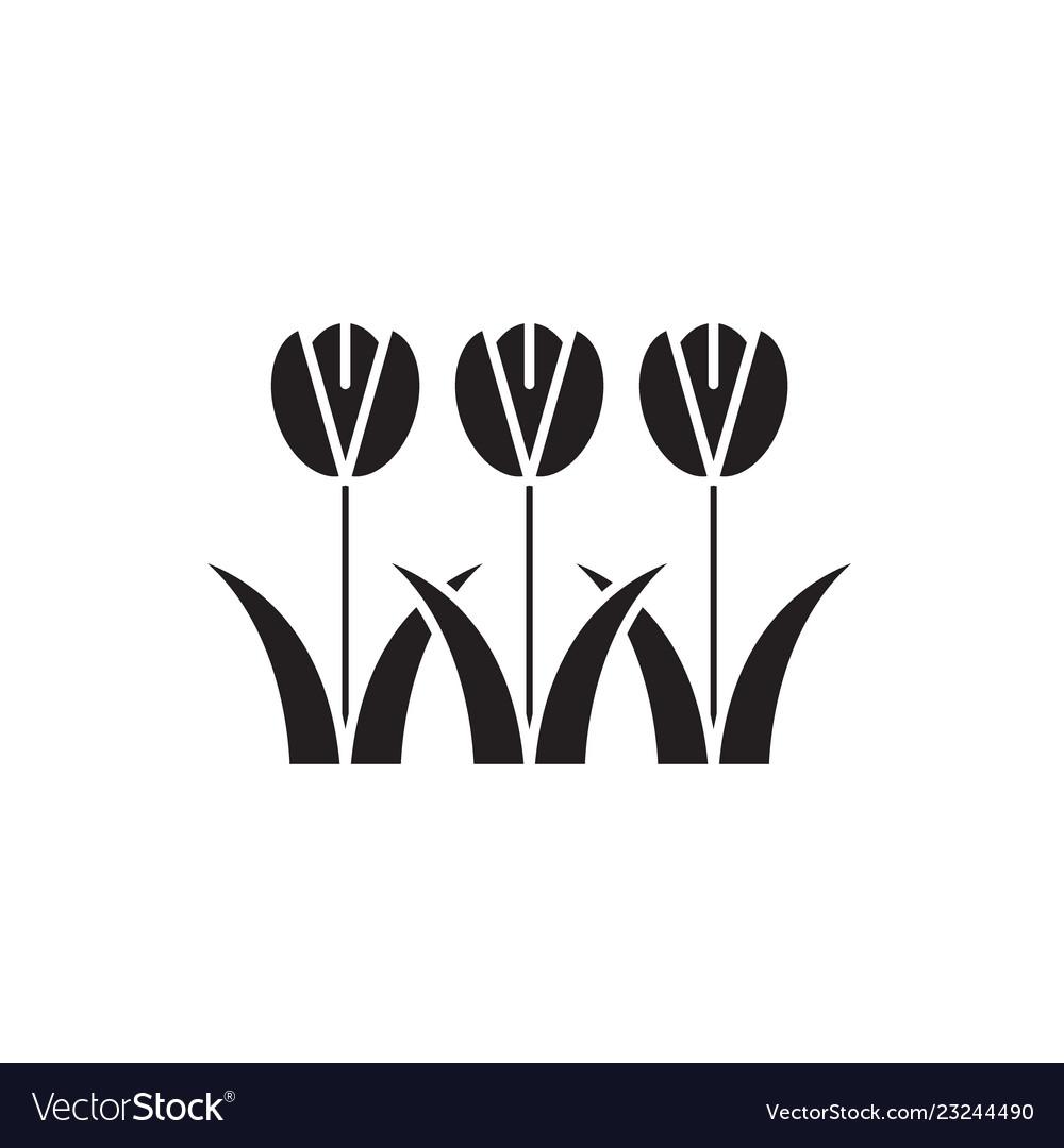 Tulips flowers black concept icon tulips