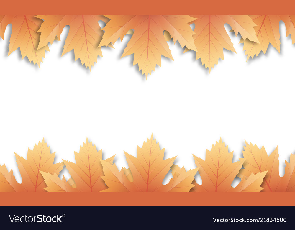 Autumn leaves background fall maple leaves frame
