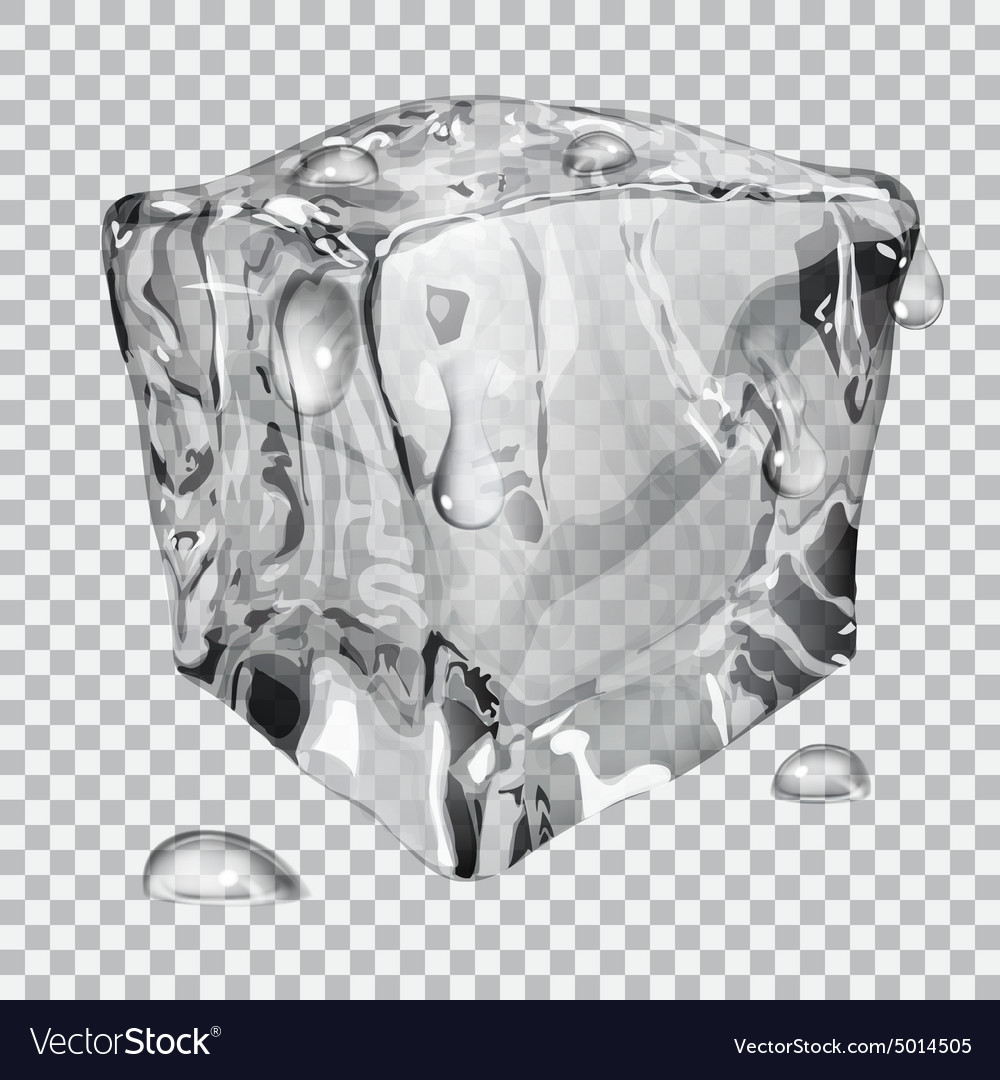 transparent ice cube royalty free vector image vectorstock