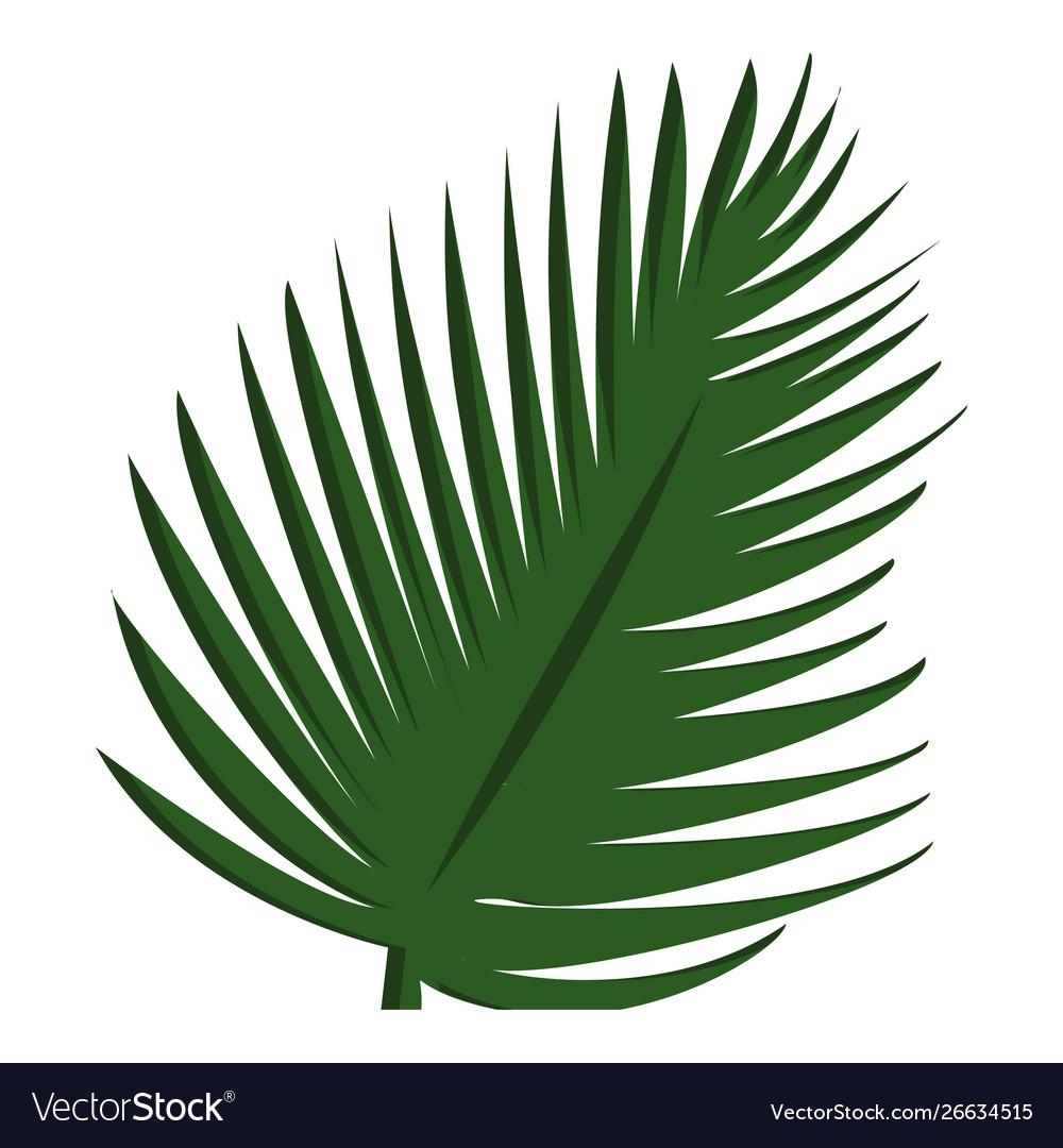 Palm tree leaf icon cartoon style