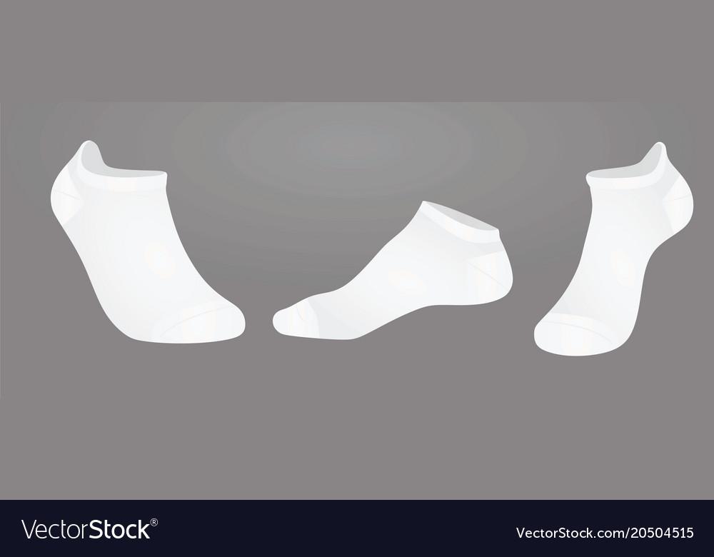 Short socks vector image