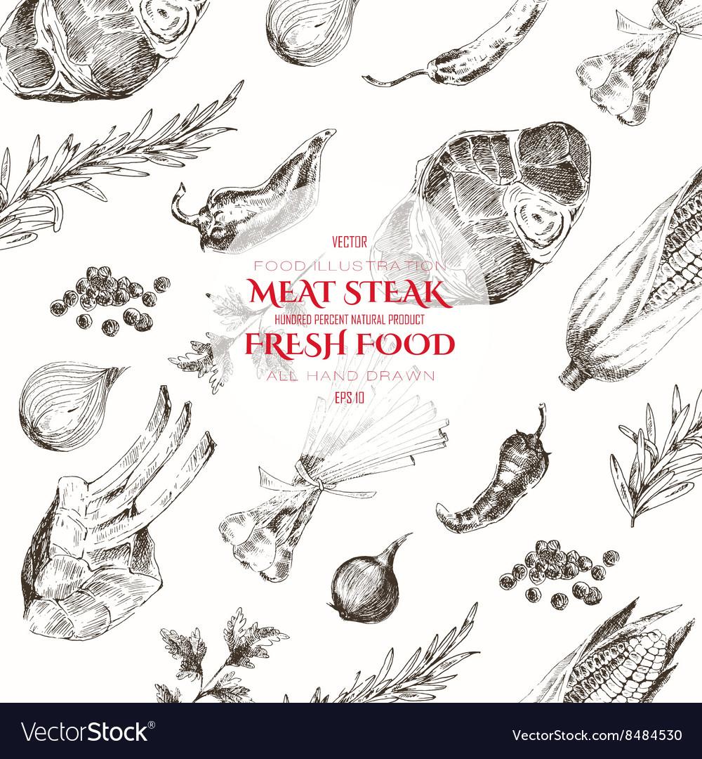Meat steak sketch drawing designer template vector image