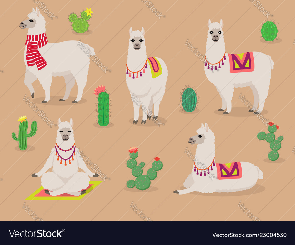 Set of cute llamas in different poses desert with