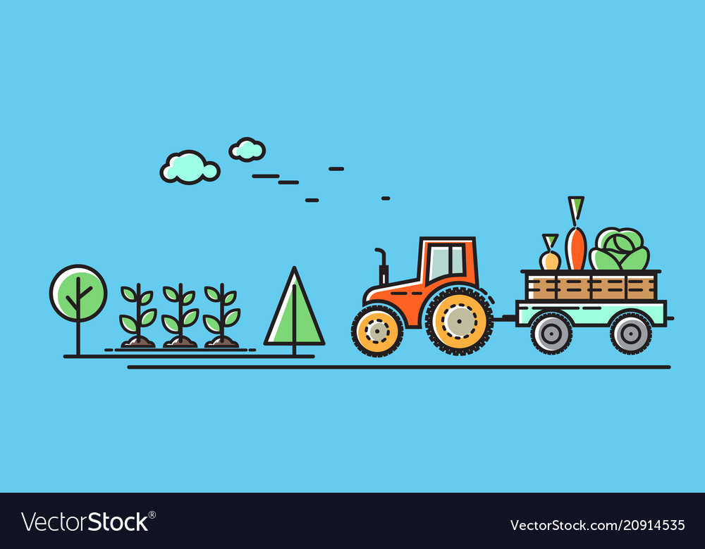 Tractor rides on the road in the countryside