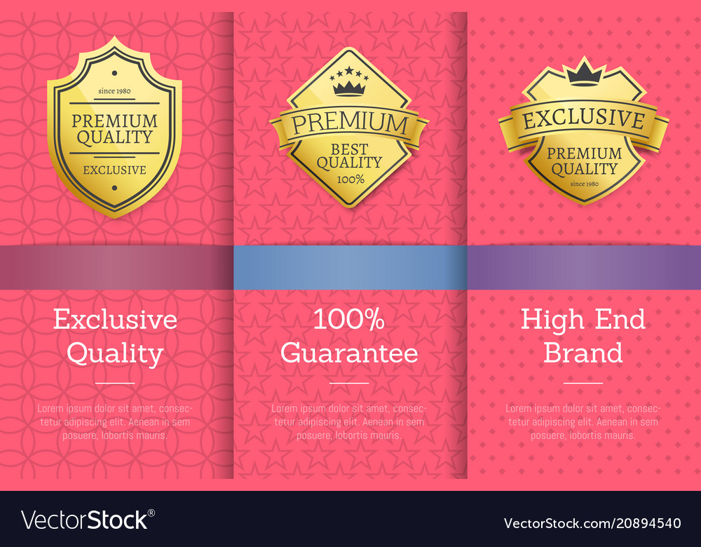 Exclusive quality 100 guarantee high brand label vector image