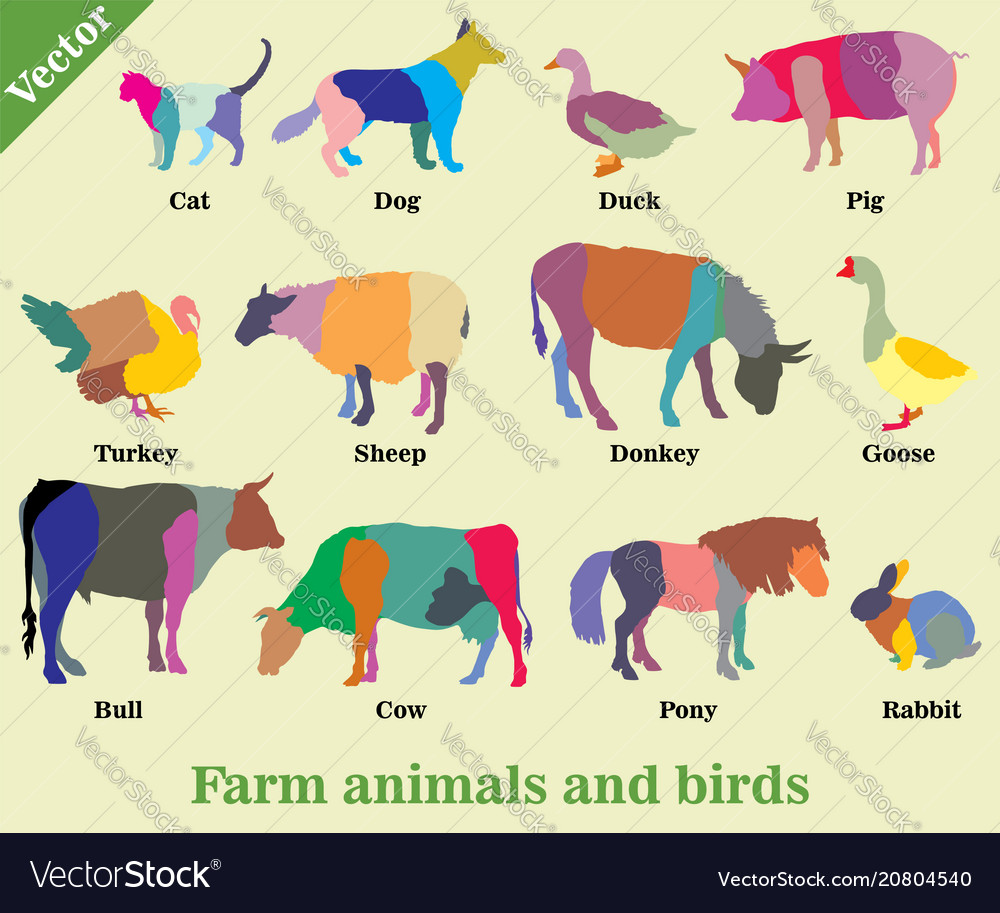 Mosaic farm animals and birds silhouettes