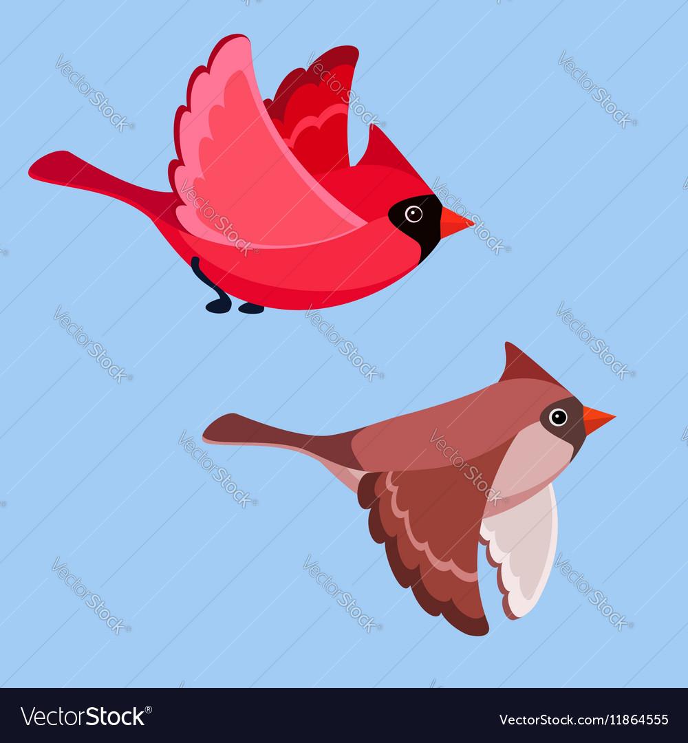 Cardinal Pair vector image