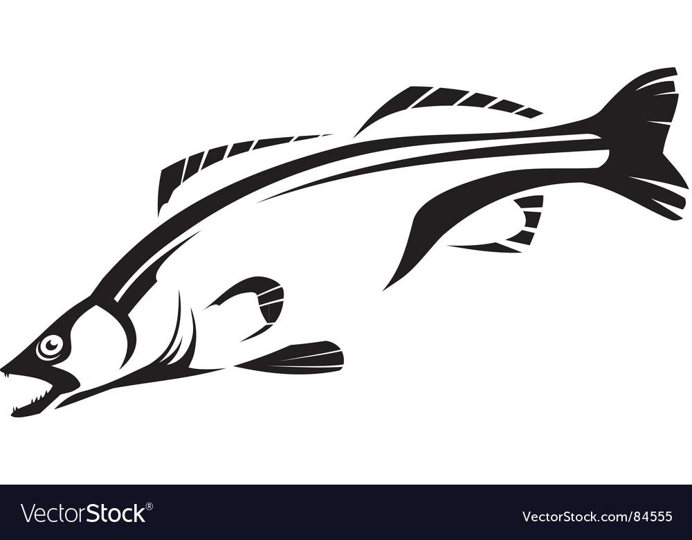 Fish vector image