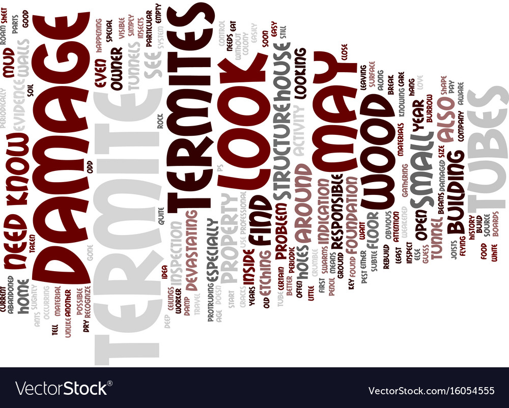 Termite damage text background word cloud concept vector image