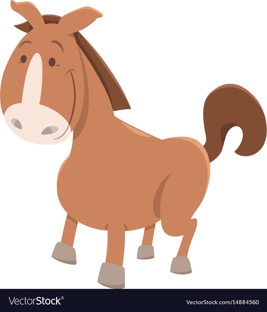 Horse or pony cartoon animal