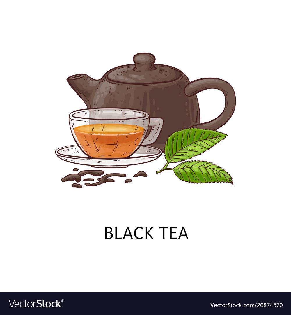 Black tea composition drawing - hot herbal drink