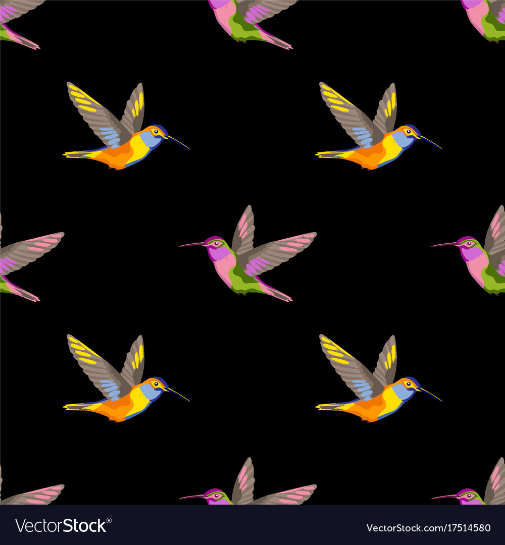 Hummingbird Embroidery Seamless Pattern Royalty Free Vector