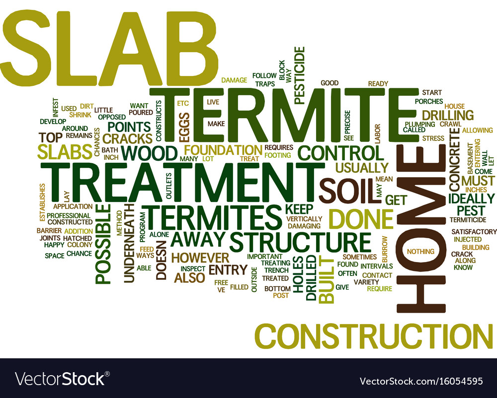 Termite treatment slab text background word cloud vector image