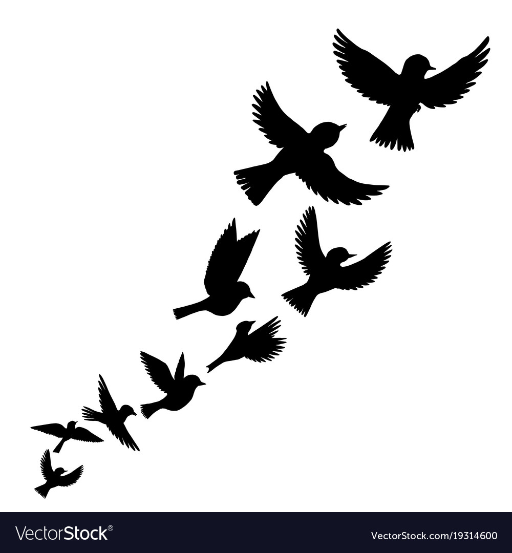 flying birds silhouettes royalty free vector image rh vectorstock com cute bird silhouette vector bird silhouette vector art free