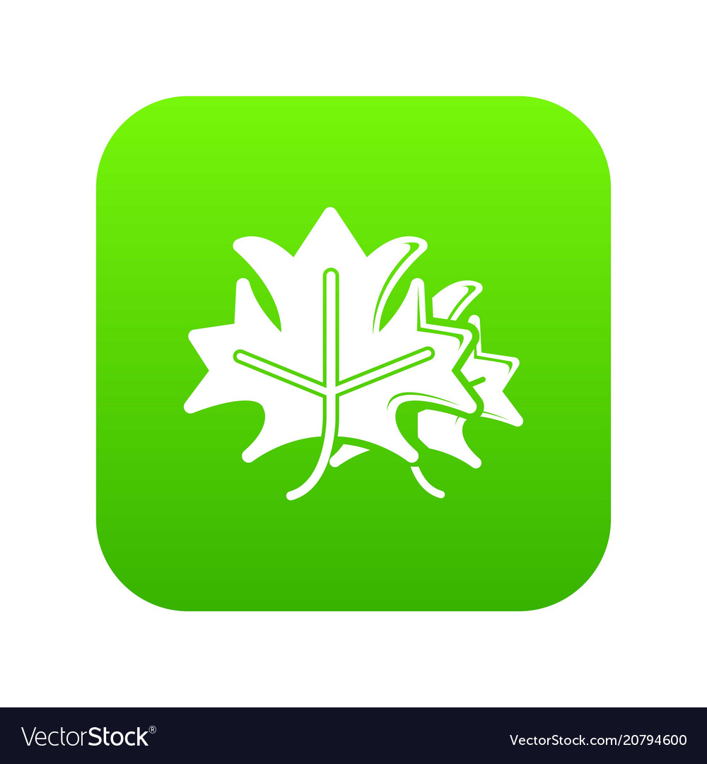 Maple icon green