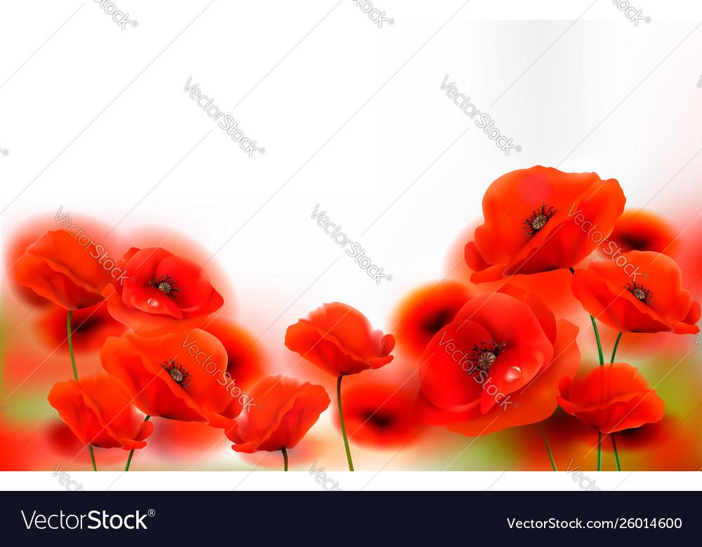 Red poppy flowers background