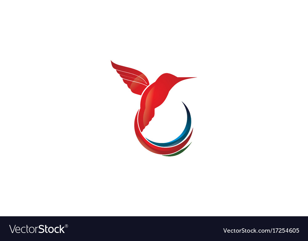 Hummingbird logo design icon design vector image