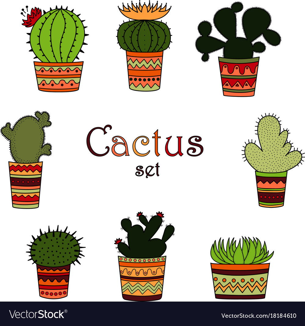 A set of color cactuses in pots vector image