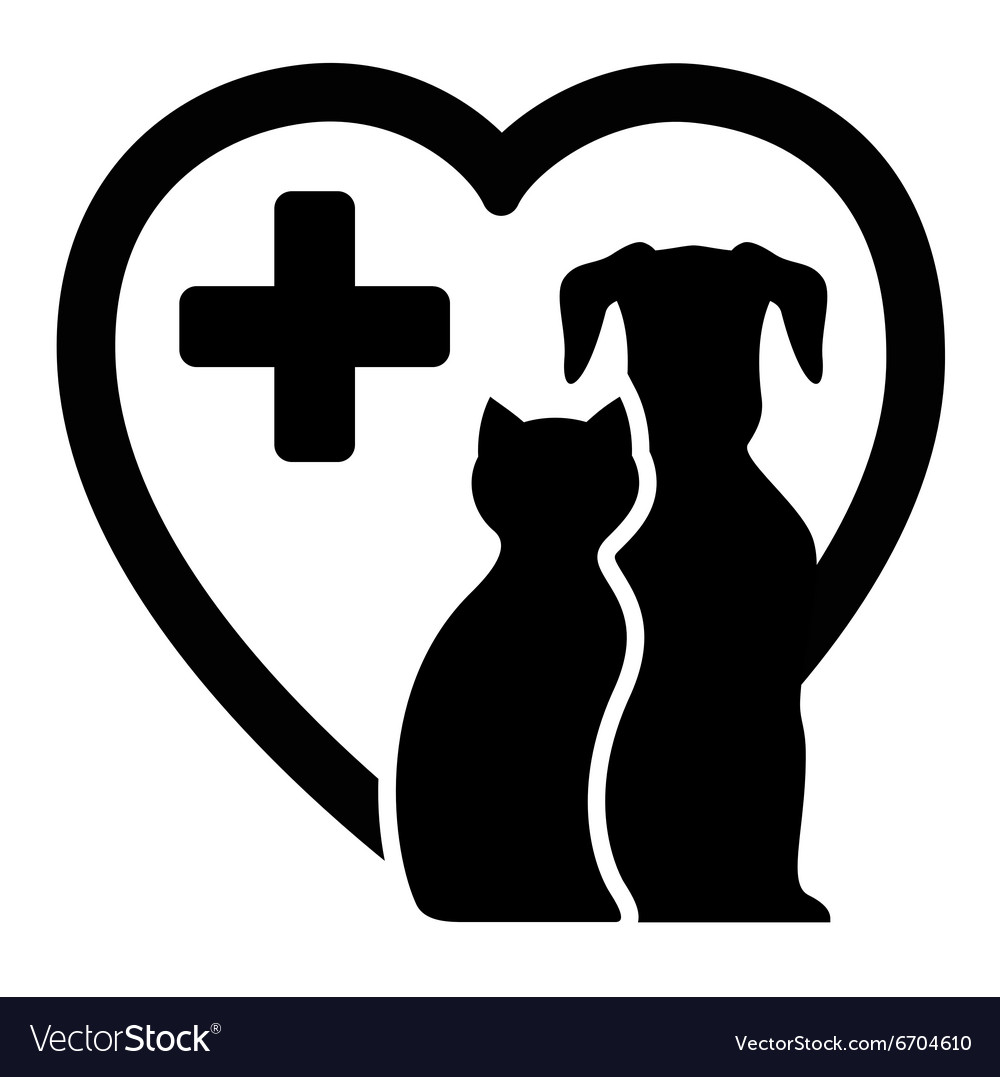 Icon for veterinary services vector image