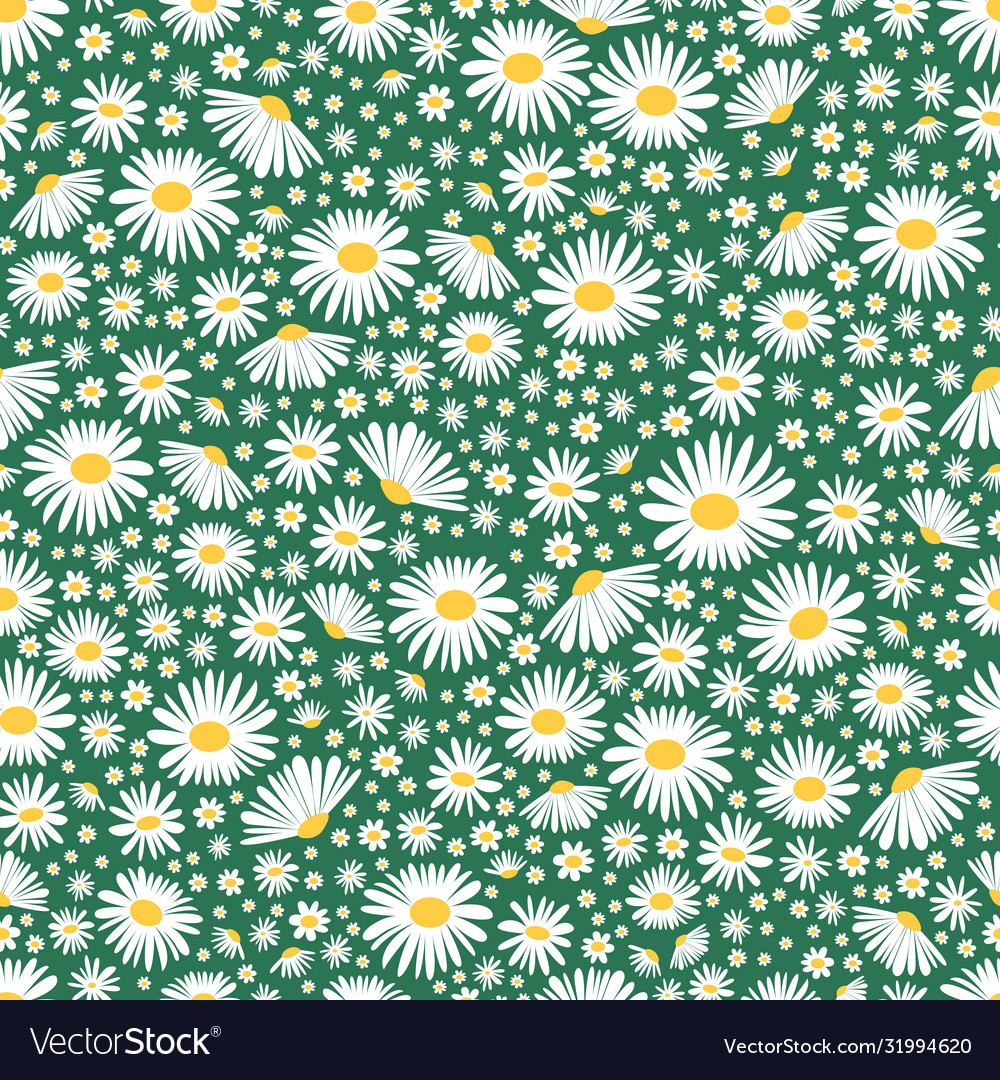 Wild chamomile seamless floral background