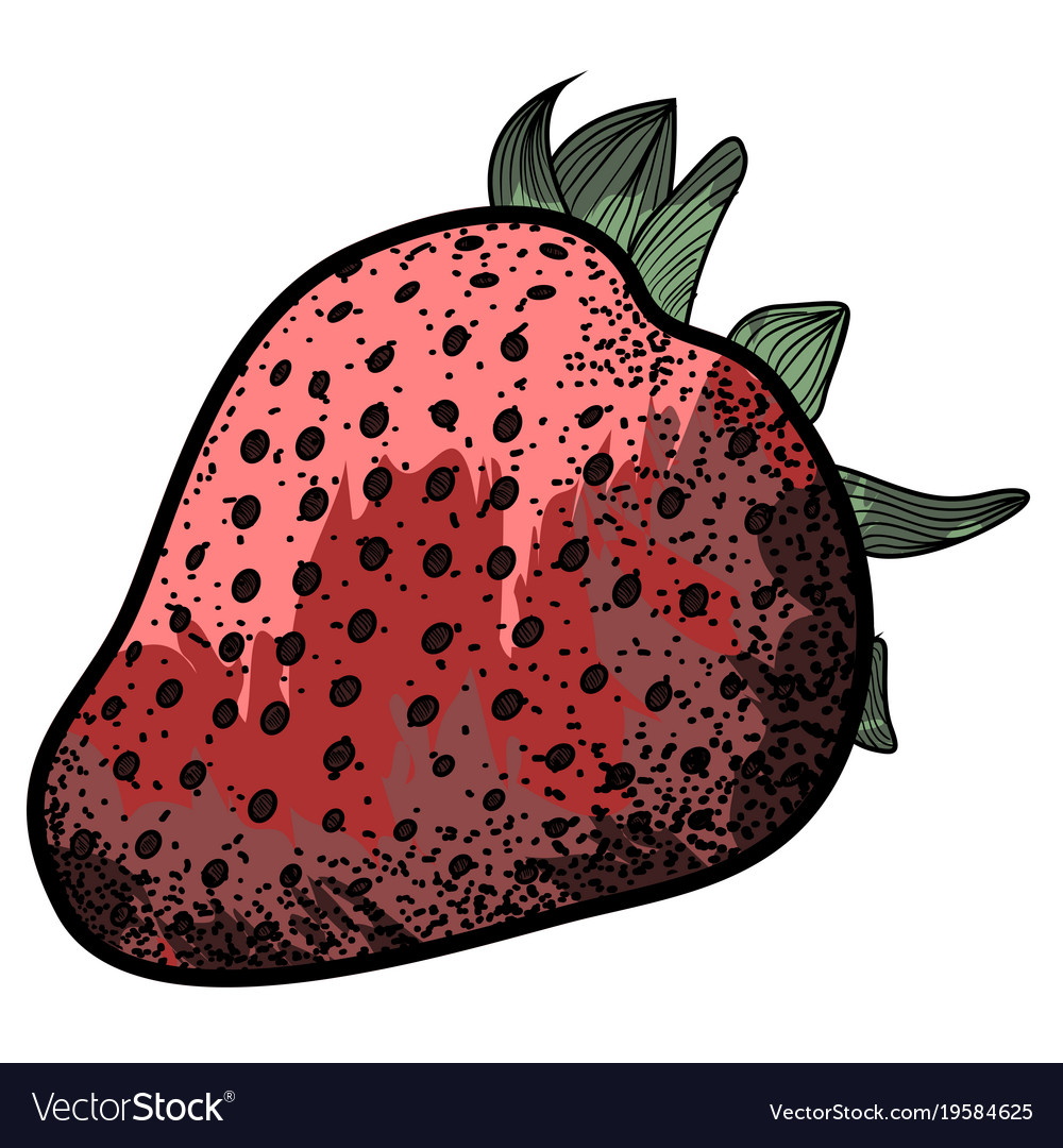 Isolated vintage strawberry