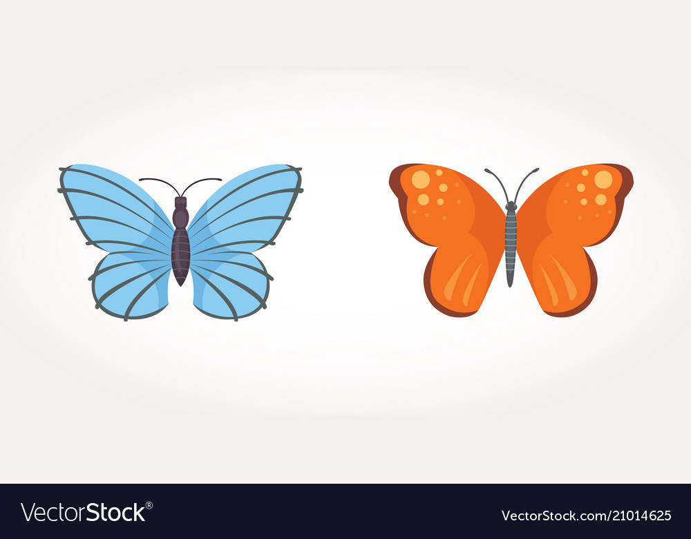 Set of colorful butterfly design