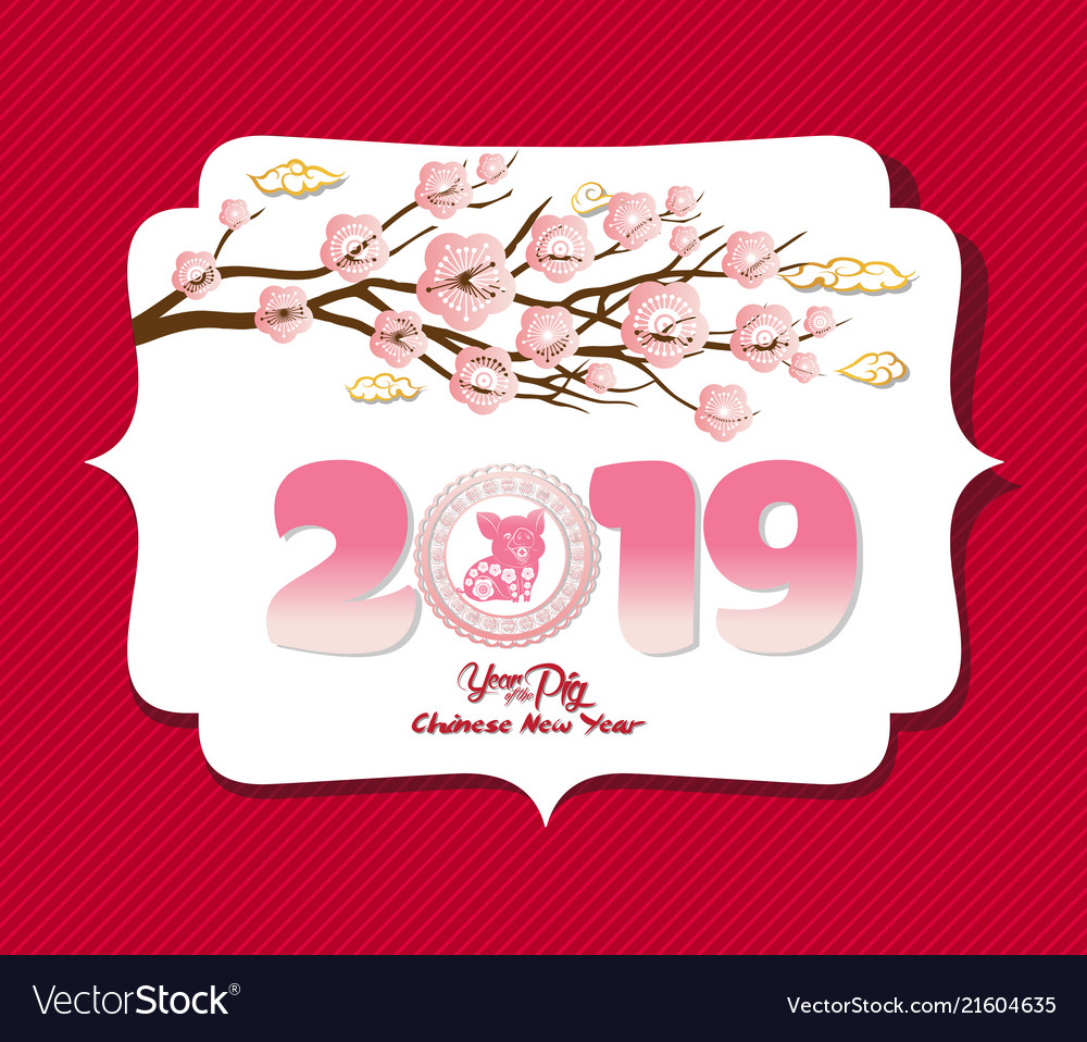 chinese new year 2019 background design year of vector image