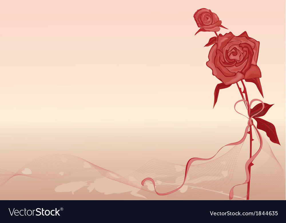 Valentines background with rose
