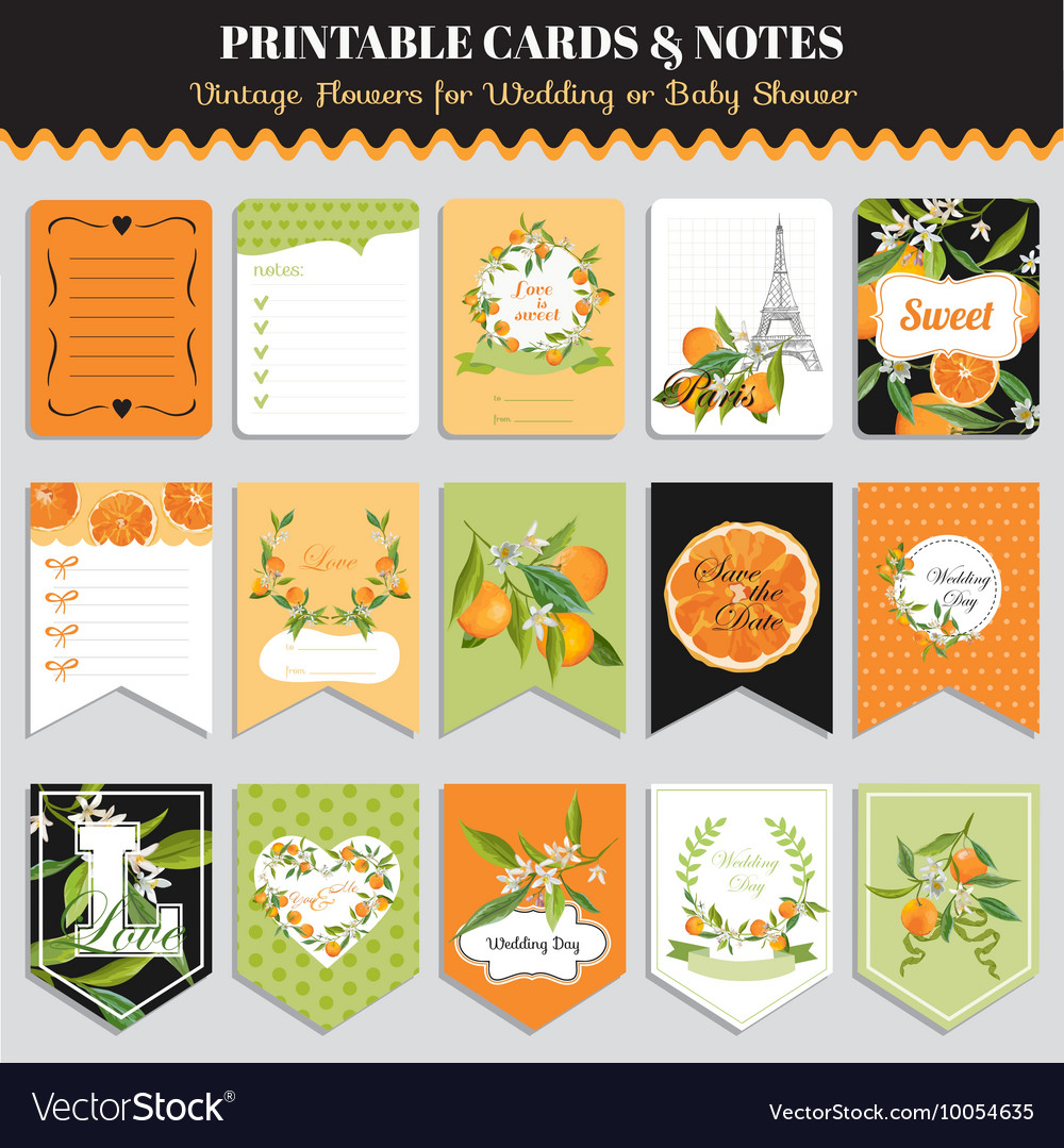 Vintage Orange Flowers Card Set Birthday Vector Image