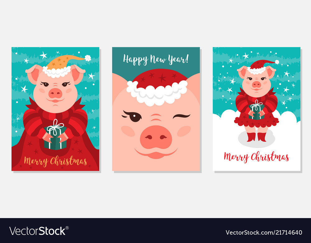 Christmas Pigs.Funny Christmas Pigs Greeting Cards Merry