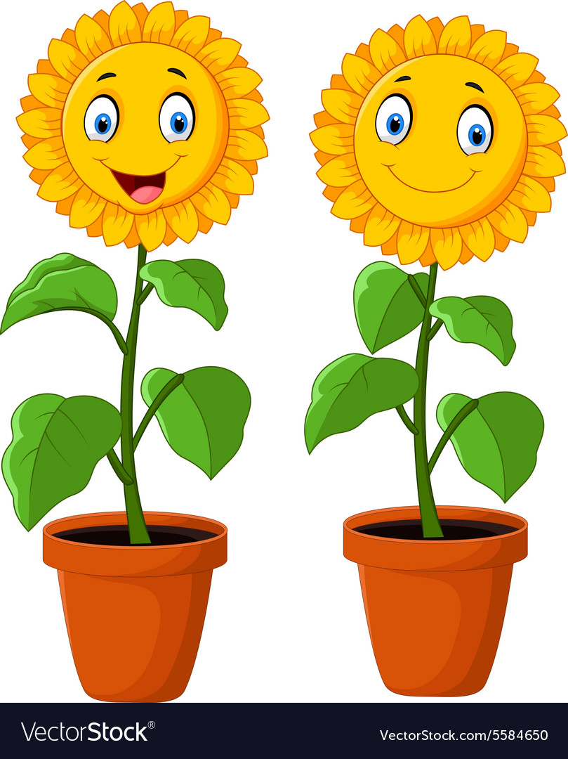 cartoon happy sunflower royalty free vector image rh vectorstock com sunflower cartoon png sunflower cartoon images