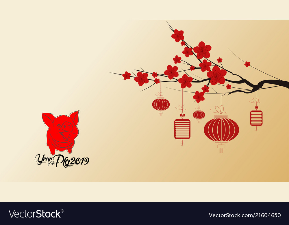 Chinese new year 2019 with blossom wallpapers Vector Image