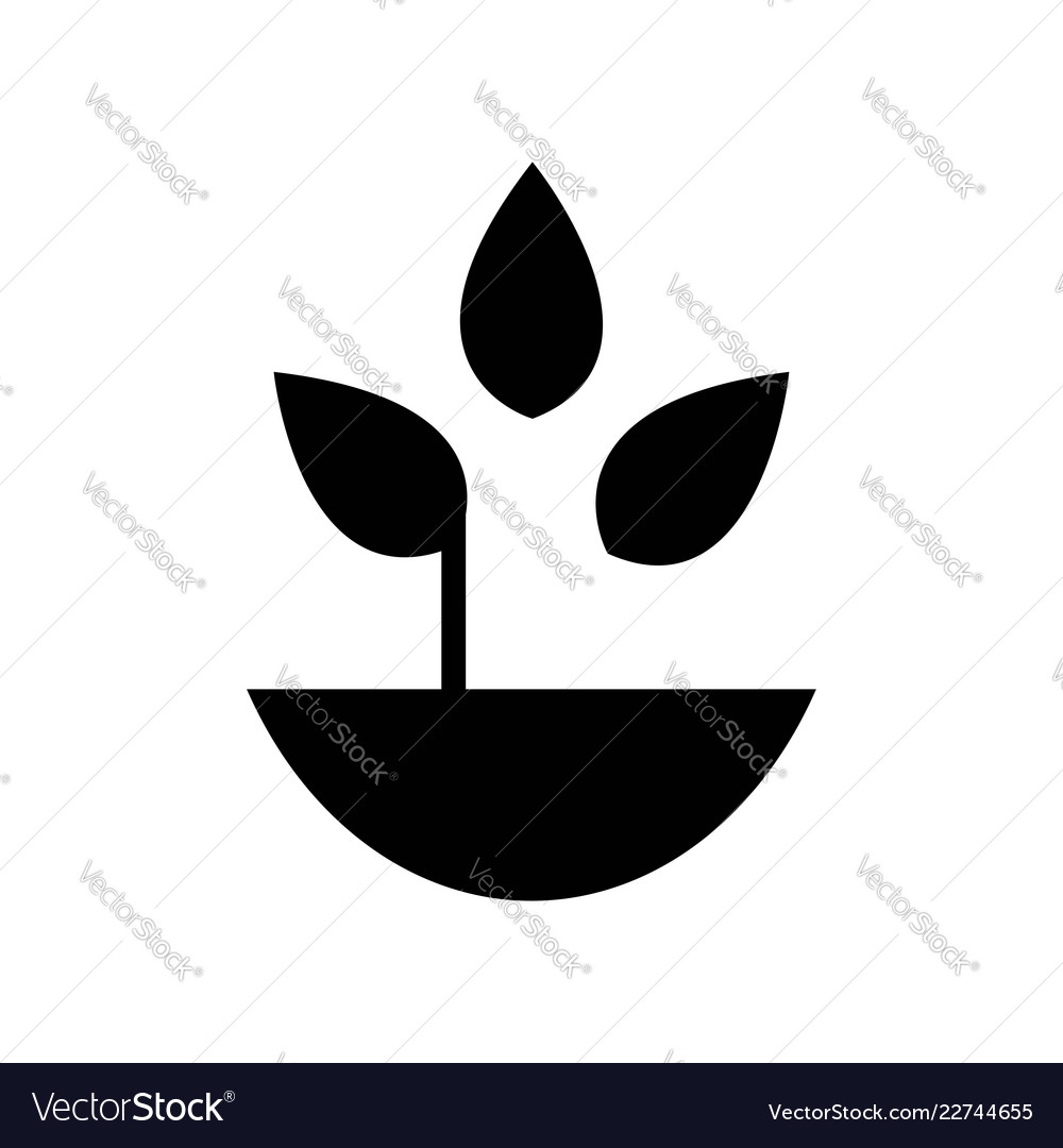 Plant with leaves in a pot icon icon simple