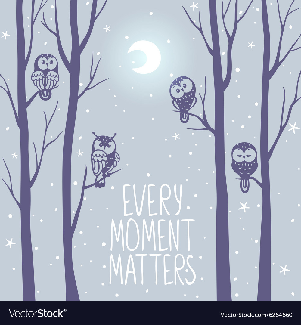 Owls night background vector image