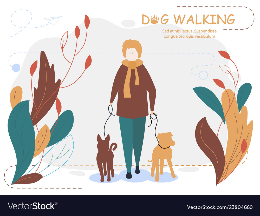 Owner and dogs walking cartoon for