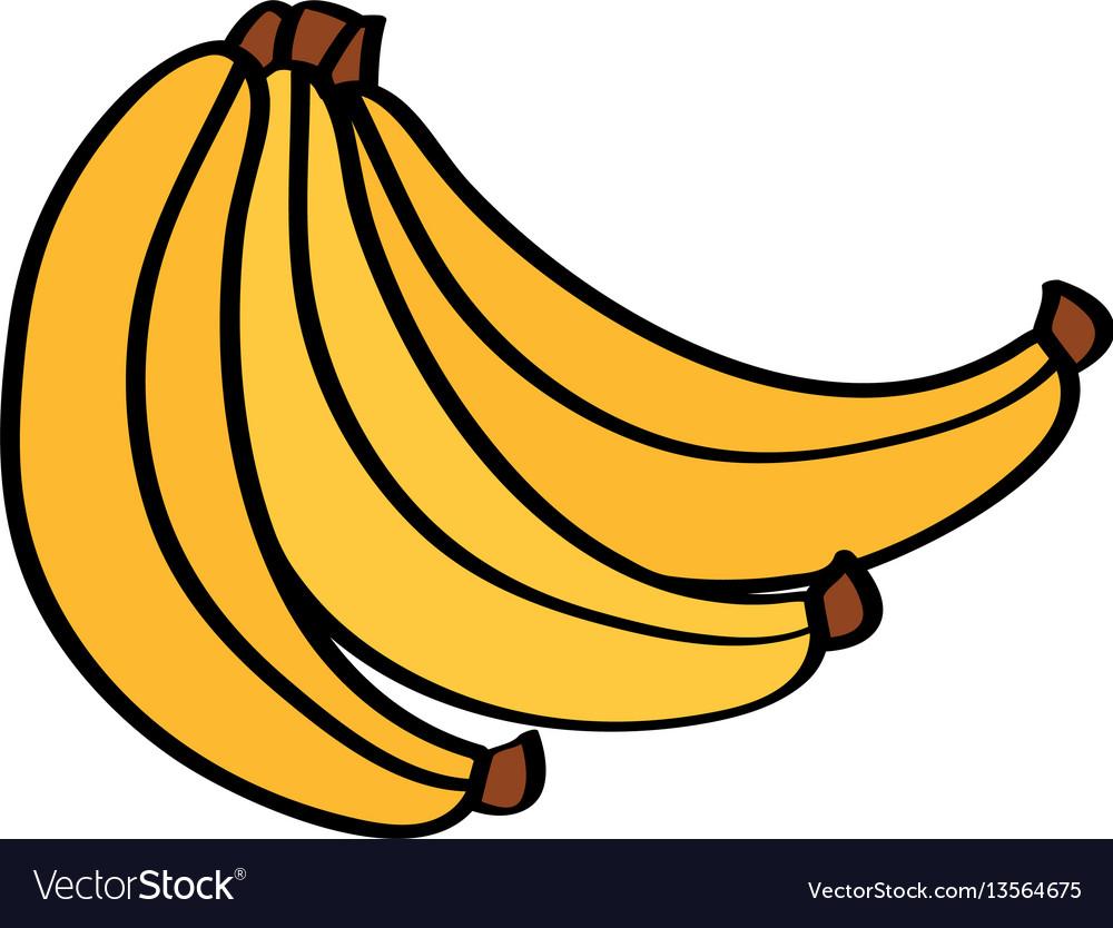 Banana Fresh Fruit Drawing Icon Vector Image