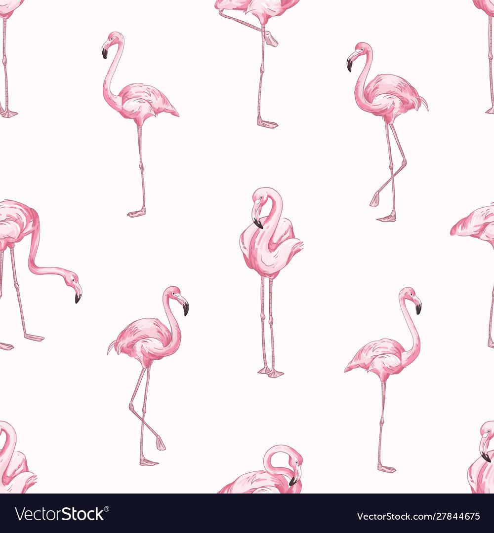 Pink flamingos seamless pattern beautiful